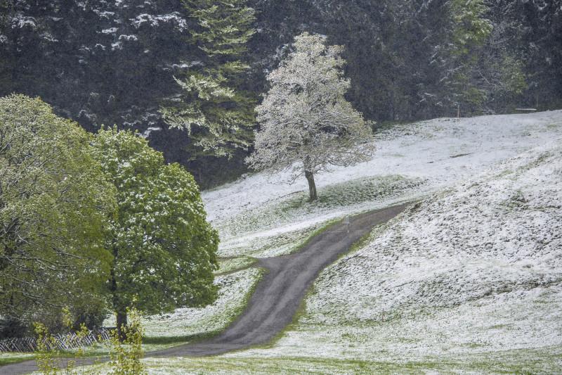 Schneefall im Mai